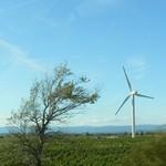 Nouvelle série de photos de Luc-sur-Orbieu Image3746c.jpg